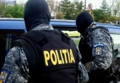 Bilanț spectaculos. Peste 400 de percheziții trei tone de droguri confiscate de polițiști de la începutul anului.