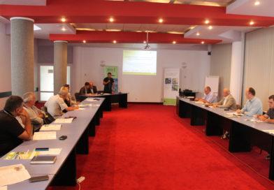 Mai multe vehicule electrice în orașe. Va avea și Alba Iulia transport în comun ecologic?