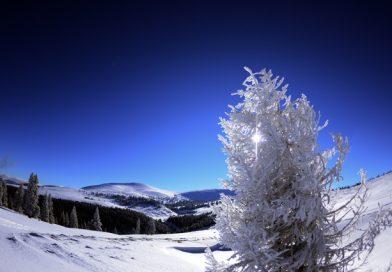 Condiții excelente de ski pe pârtiile din județul Alba