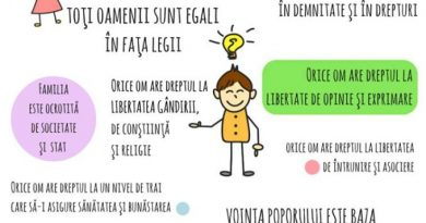 proiect educativ ai drepturi economic