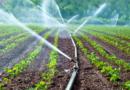 Apa CTTA: Nu folosiţi apa potabilă la agricultură şi grădinărit